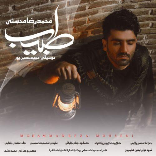 دانلود آهنگ جدید جدید محمد رضا محسنی طبیب