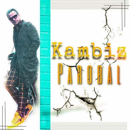 دانلود آهنگ جدید کامبیز پروبال