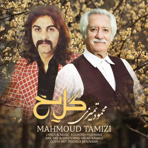 دانلود آهنگ جدید محمود تمیزی گل یخ