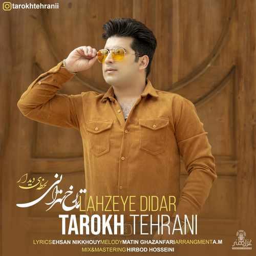 دانلود آهنگ جدید تارخ تهرانی لحظه ی دیدار